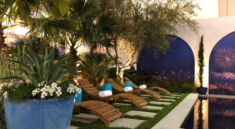 2020 Flower Show: An escape to South of France … an escape from germs 4
